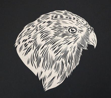 Kakapo - Owl Parrot