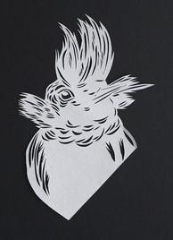 Tufted Humminbird