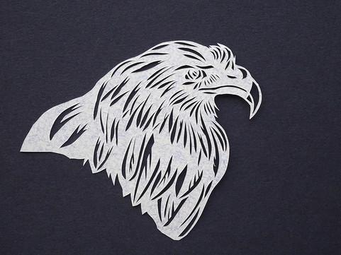 Falcon (profile)