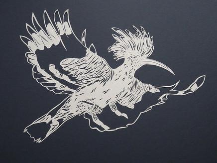 Hoepoo in flight