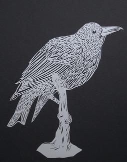 Raven #1