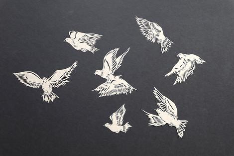 Flock of doves