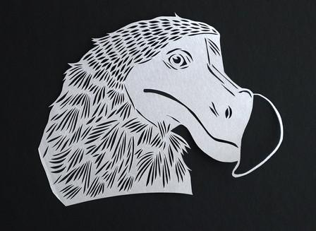 Dodo portrait
