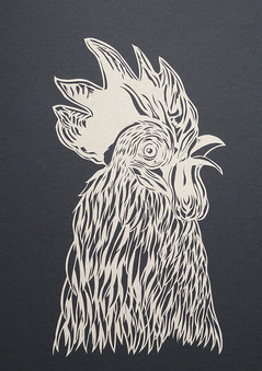 Rooster - portrait