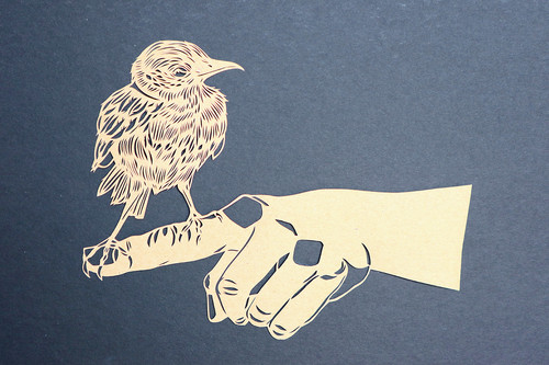 Bird on hand - Sparrow