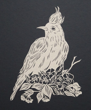 Birds of Spring #1