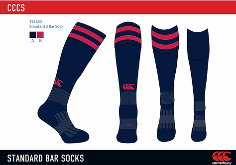 Christ Church Cathedral School Games Socks