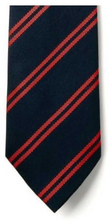 Christ Church Cathedral Main School Tie