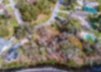 Lot 22 Outline.jpg