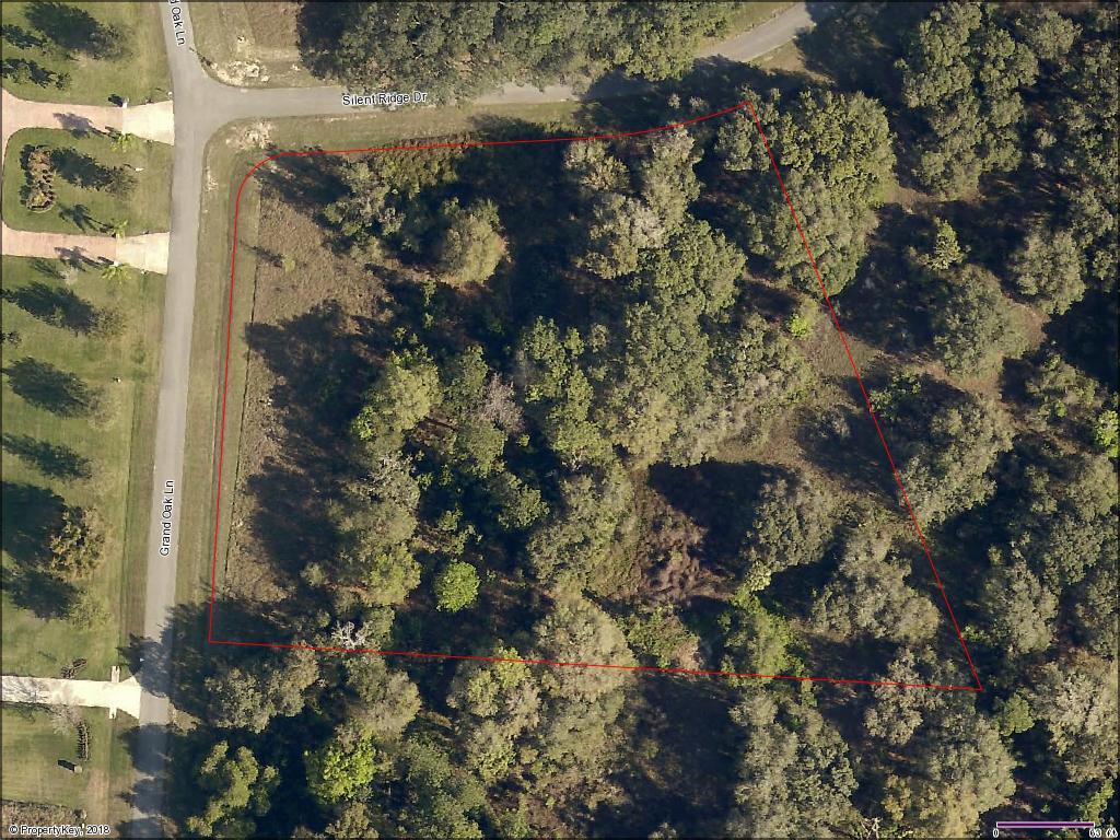 Lot 46 Silent Ridge Outline