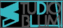 logo s blum.png