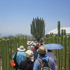 Jardines Mexico 050.JPG