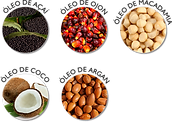 NUTREE - Ativos_multioils-port.png