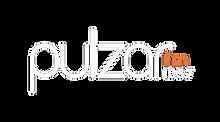 PulzarFM.png