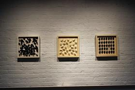 Three-person exhibition, Dear Nature