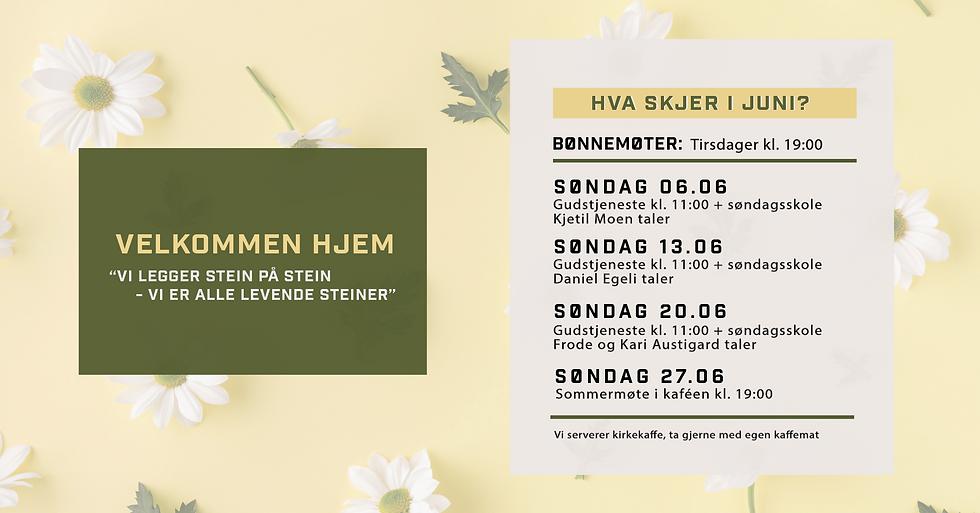 Skjermbilde 2021-06-04 kl. 21.01.11.png