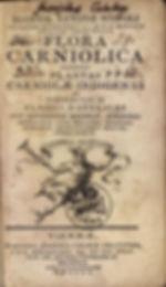 page5-346px-Giovanni_Antonio_Scopoli_-_F