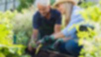 dobrovoljno-vrtnarjenje-14-4-2020.jpg