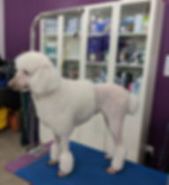Dog with 3D sculpting