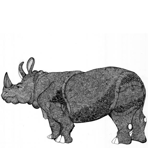 Standing Rhino