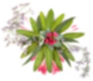 aridhandflowerart2