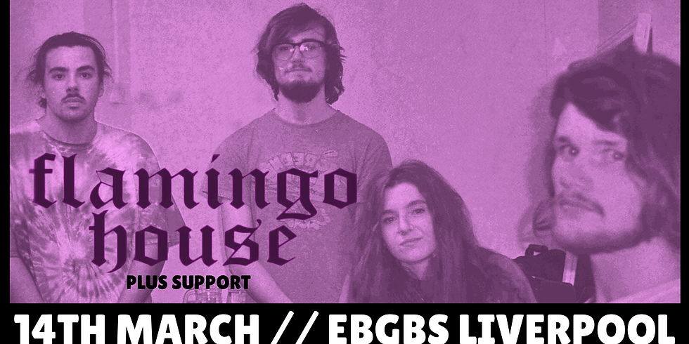 Flamingo House + Support