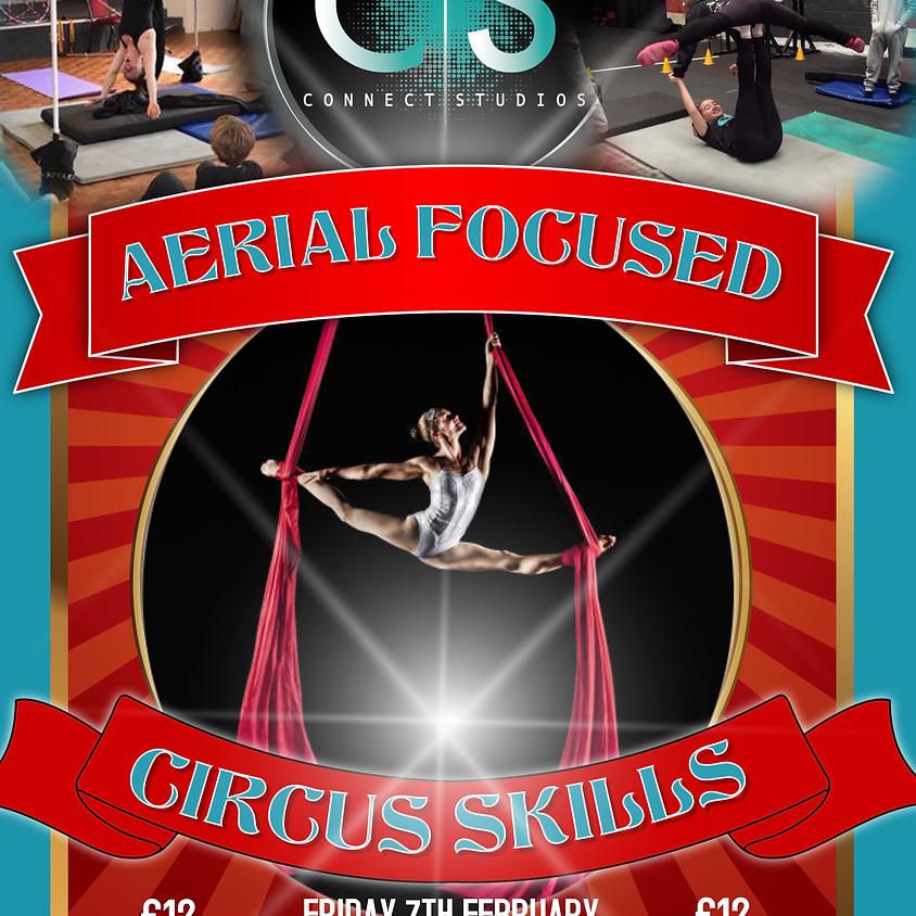 Aerial Focused Circus Skills