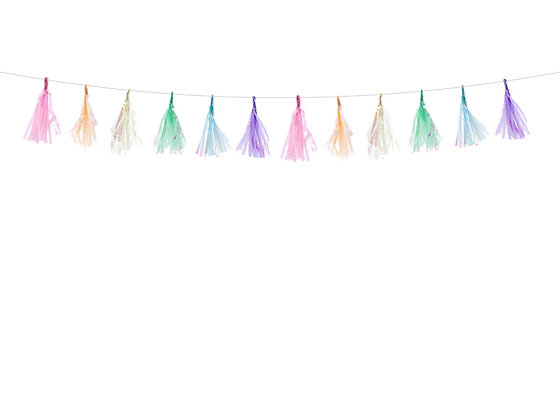 Multicoloured Tassel Bunting