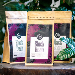 Black Bean Blend
