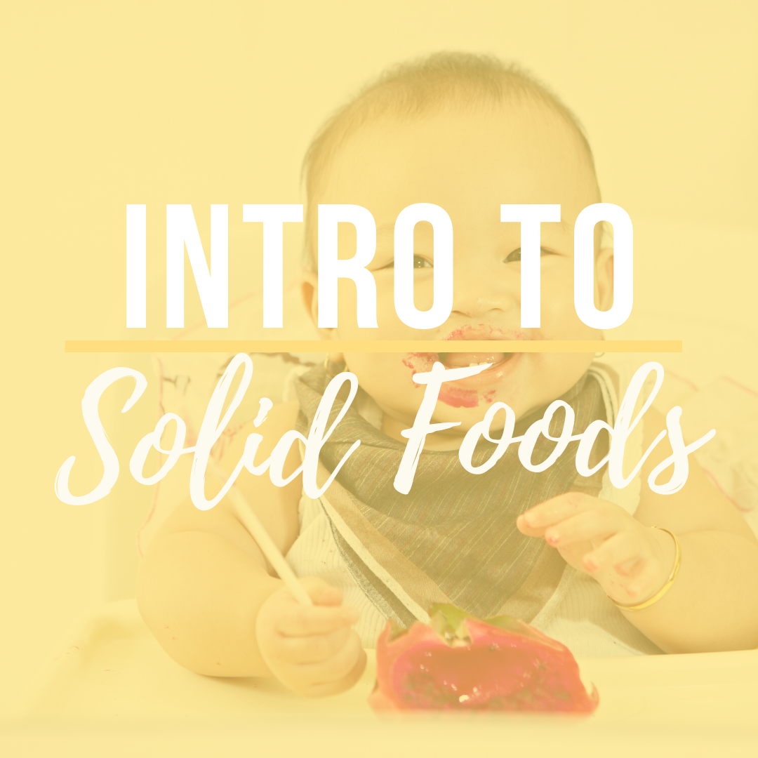 Educational Class for Introducion Solid Foods to Baby, Class for New Parents, Introduction Table Foo