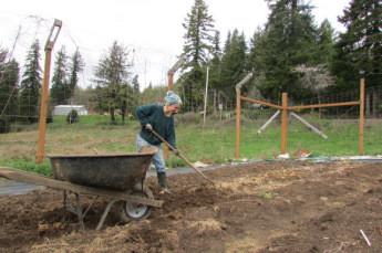 Preparing the soil for planting