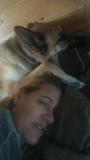 sleeping with hooman.png
