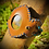 Thumbnail: Bracelet cuir/cordon et Rhyolite