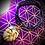 Thumbnail: Collier cordon cuir tressé, pendentif Jaspe paysage