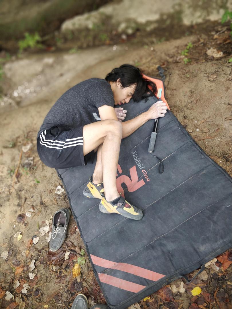 Sleeping Jay.jpg