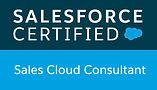 03-Sales Cloud Consultant.jpeg