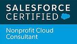 05- NPSP Cloud Consultant - Logo.jpeg