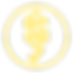 DOLLAR TICK icon  yellow.png