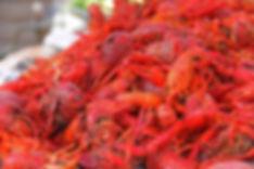 crawfish-169694_960_720.jpg