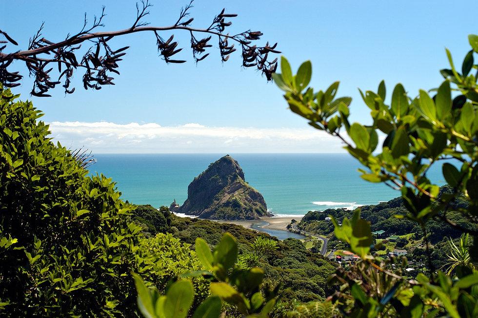 L233-Piha-Beach-Auckland-Scott-Venning.j
