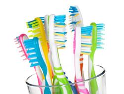 BrushMe OEM Toothbrush