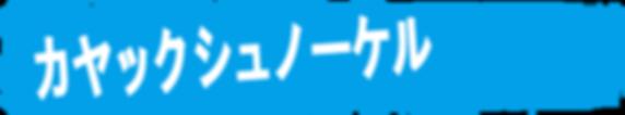 石垣島でカヤックシュノーケル