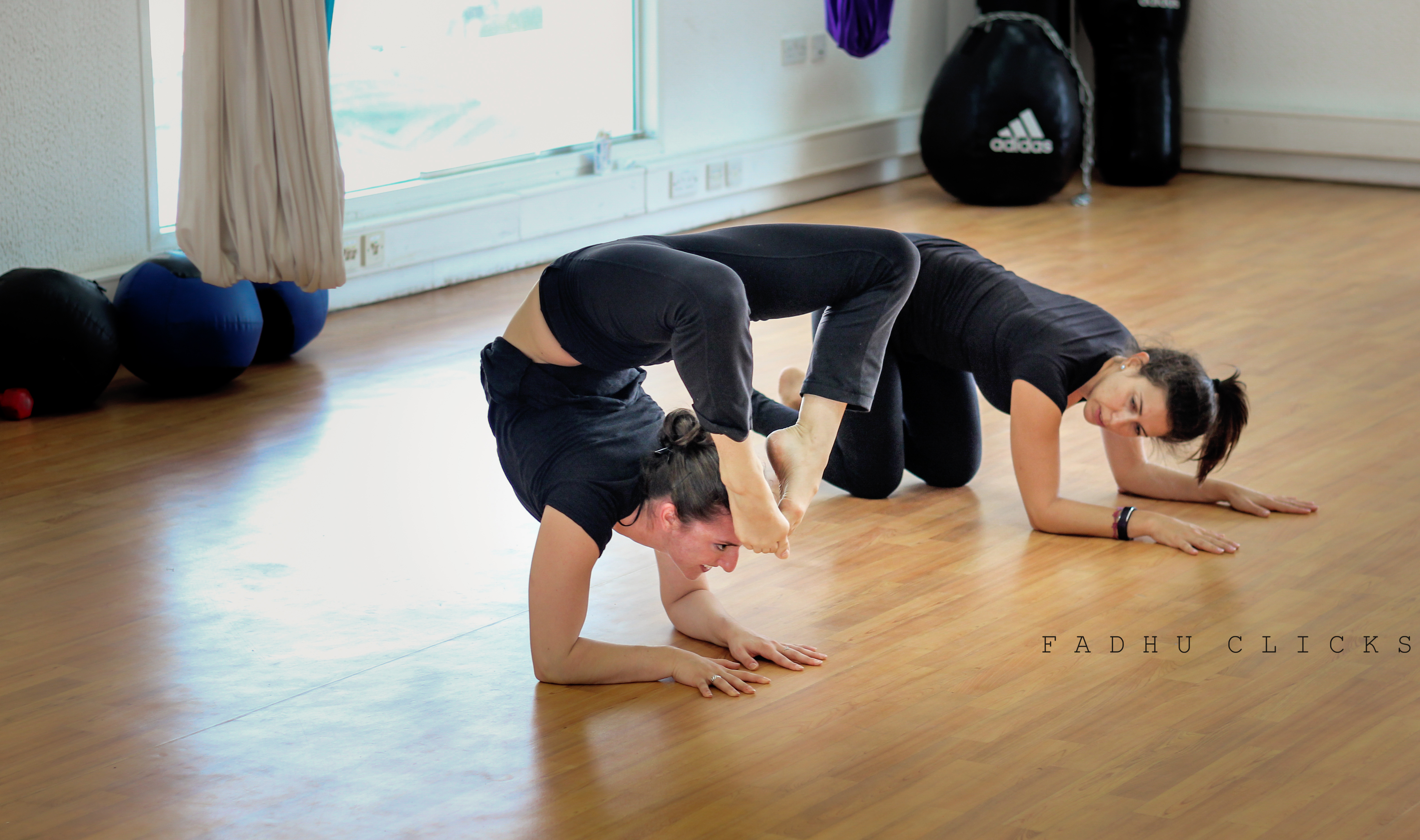Scorpion forearm stand