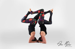 Stag headstands
