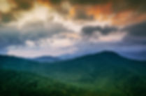 TropicalForestLandscape.jpg