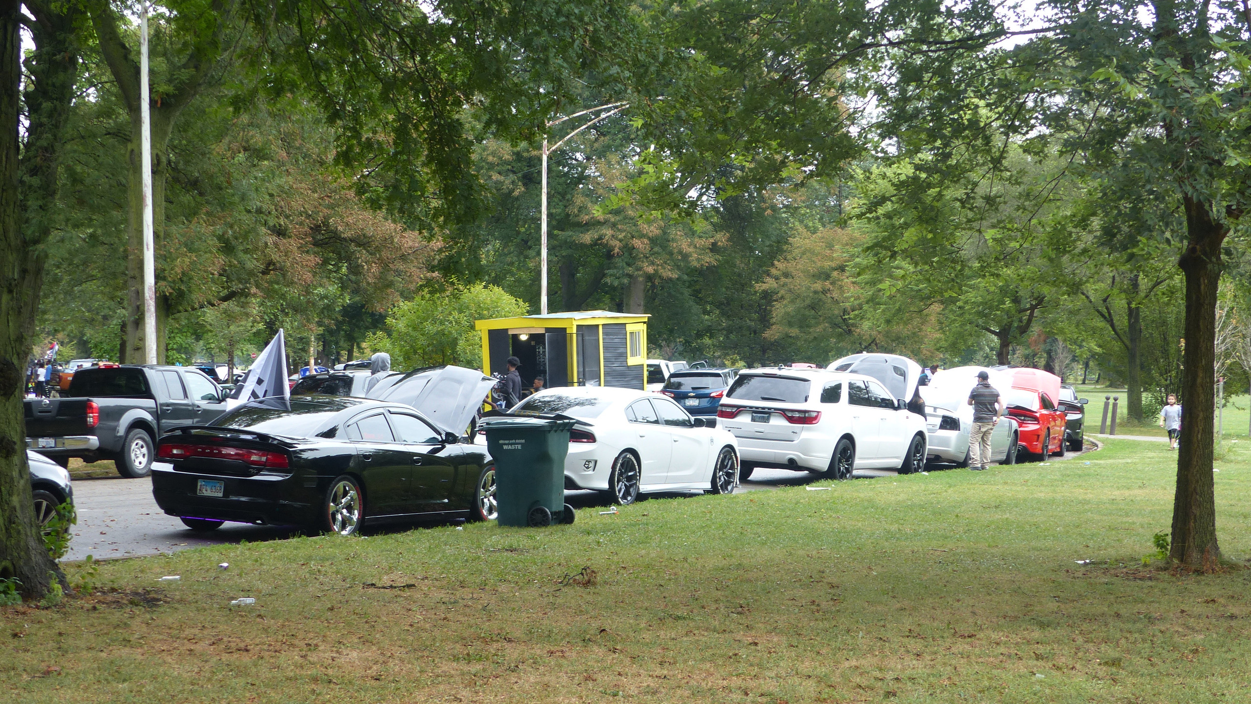 Muscle Cars in Washington Park