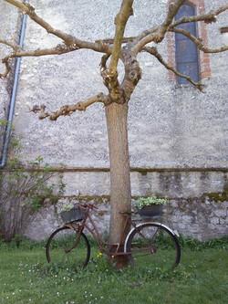 Bouloc - Le chemin de Carcès