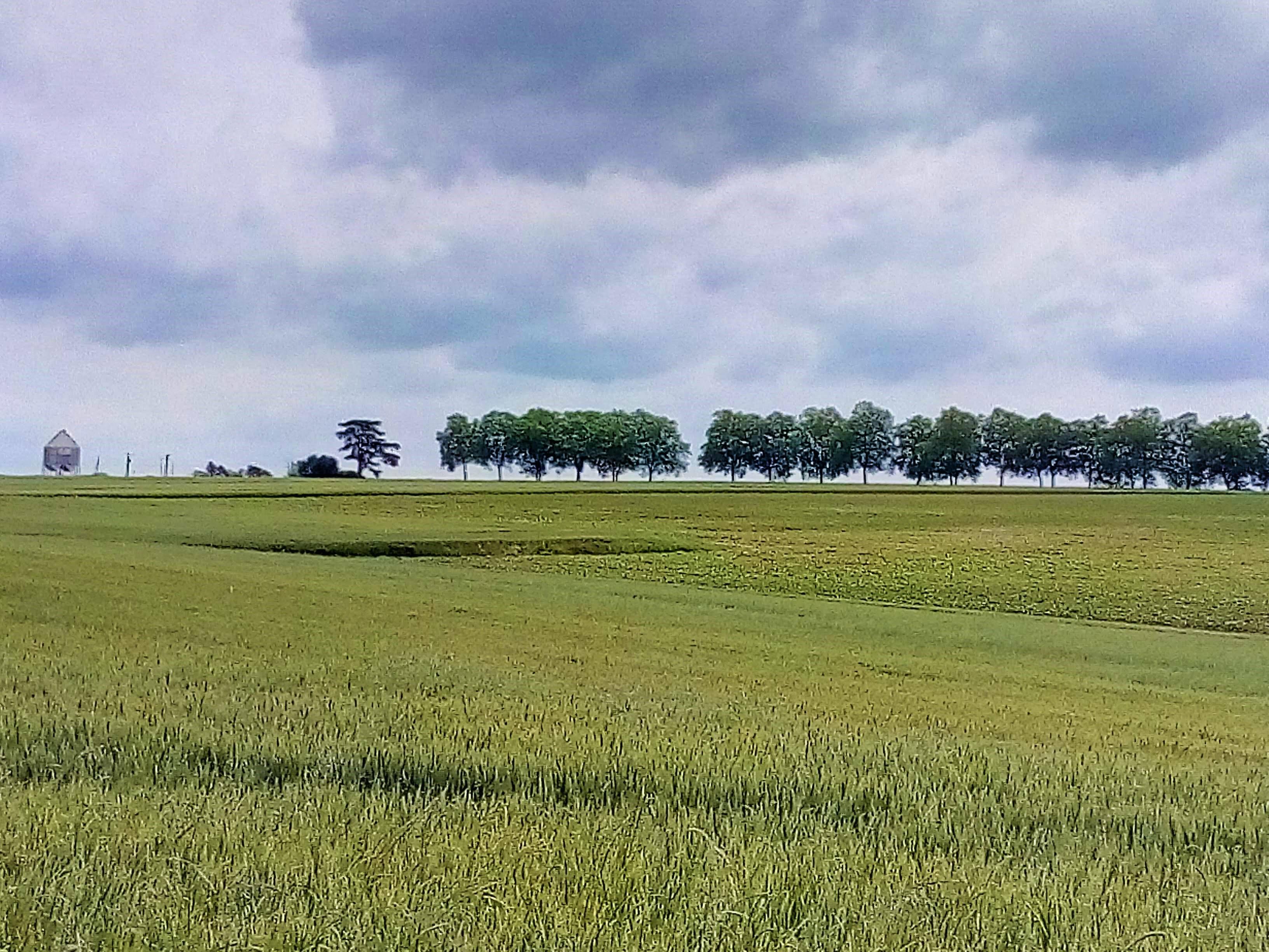 Bourg-de-Visa - Le lavoir du Théron