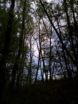 Belvèze - Chemin de la tranquillité