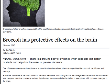 Broccoli has protective effects on the brain -  Natural Health News